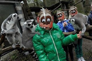 McDonald's start dierentuinactie
